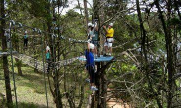 Oito pessoas praticando o esporte Arvorismo. Uma delas atravessa de uma árvore à outra em um fio de aço; outra atravessa andando sobre uma rede; outra pessoa atravessa em plataformas de madeira; as demais pessoas estão em plataformas situadas entre os desafios da travessia.